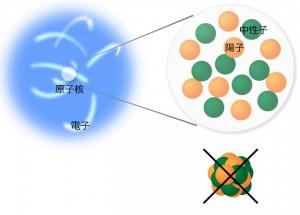 図1 原子核の構造 原子核は陽子と中性子からできている。陽子や中性子はかたまっているのではなく、互いに力を及ぼしあいながらも自由に運動している。