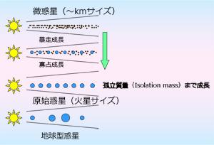 図2:太陽系の惑星が衝突合体を繰り返して成長する様子。「微惑星」が成長して火星サイズの「原始惑星」ができ、さらに衝突合体をして、現在の惑星の姿になったと考えられている。それぞれの過程で確からしいと認められいるシミュレーションが確立している。(Greenberg et al. 1978, Wetherill and Stewart 1989, 1993, Kokubo and Ida 1996, Inaba et al. 2001; Makino et al. 1998, Kokubo and Ida 1998; Weidenschilling et al. 1997, Kokubo and Ida 1998, 2000, 2002; Chambers and Wetherill 1998, Agnor et al. 1999, Iwasaki et al. 2002, Kominami and Ida 2002)