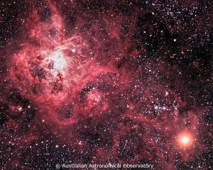 写真1:1987年に観測された超新星爆発