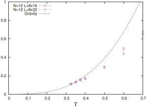図2-2スーパーコンピュータ「京」で検証した低次元版のAdS/CFT対応
