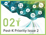 Priority Issue2