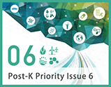 Priority Issue6