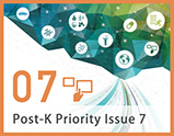 Priority Issue7