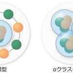 殻模型(左)とαクラスター模型(右)