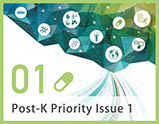 Priority Issue1