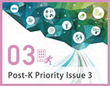Priority Issue3